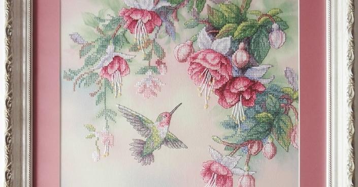 Колибри и фуксии