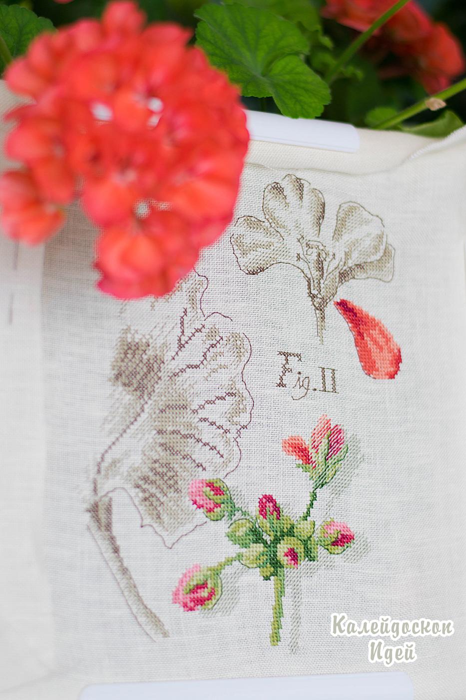 """Ботаника от Veronique Enginger """"Герань"""""""
